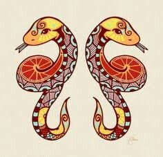 My two zodiac signs, western and chinese: the gemini snakes