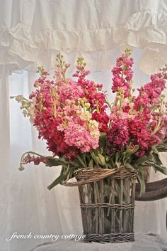 Pin by white dishes book on wedding flowers and other floral images basket of flowerscut flowerspretty flowerspink flowersfrench mightylinksfo