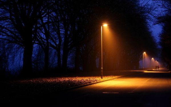 Street Light Trees At Night