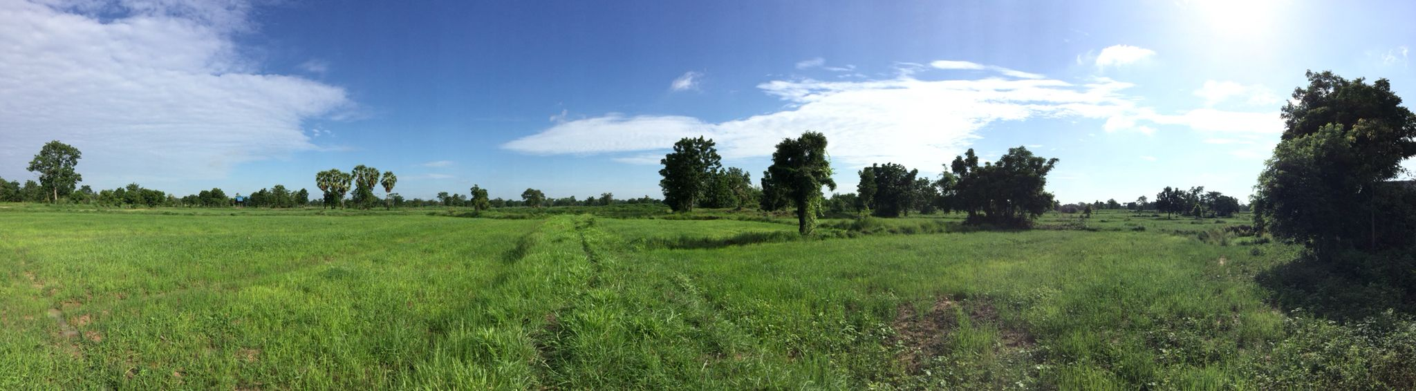 Farm life  in Nakhon Ratchasima!!