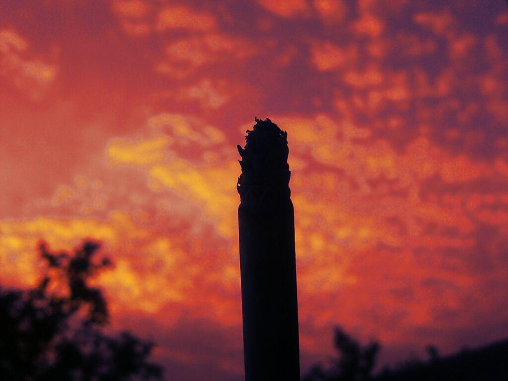 El cigarro a final de la tarde.