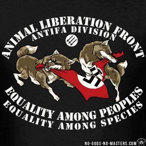 ALF Antifa Division
