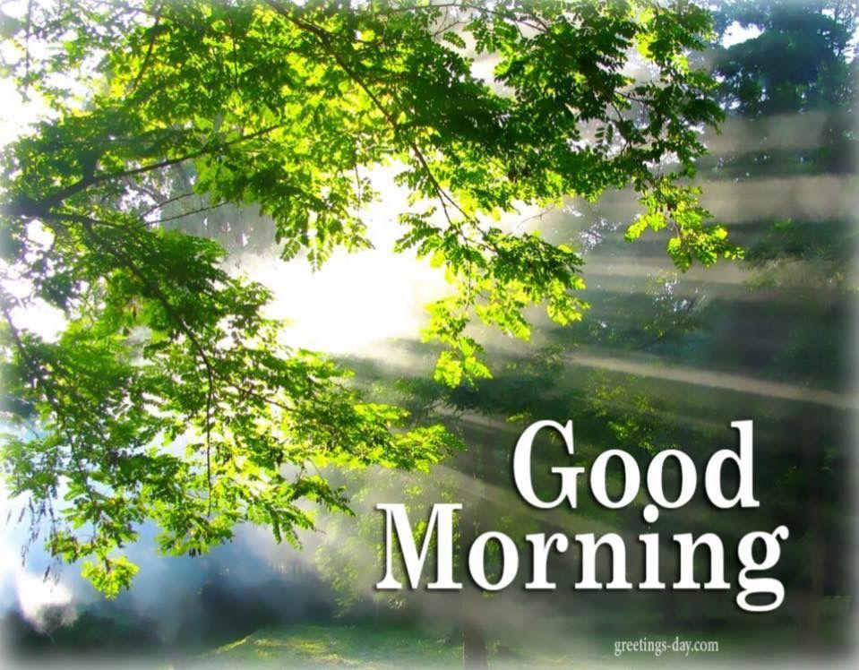 Pin By Carol Gossman On Good Morning Good Morning Nature Good Morning Images Good Morning Picture