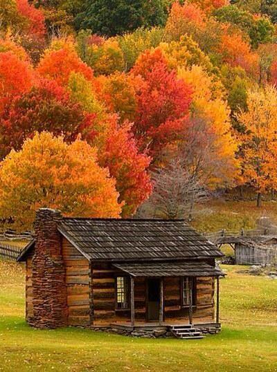 ✿❁✽Delightful✾✽❃ #autumnscenes