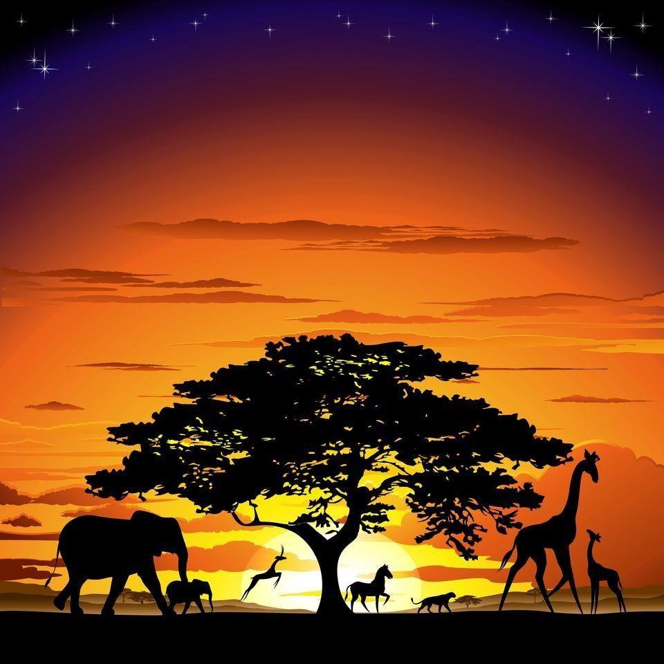 African Savanna Sunset and Wild Animals by BluedarkArt ...