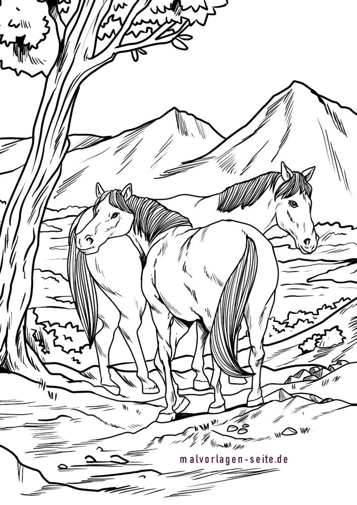 malvorlage wildpferde | pferde in 2020 | malvorlagen