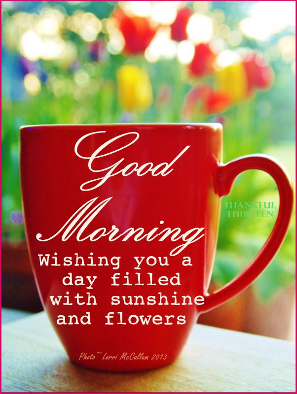 Spring Good Morning Red Mug