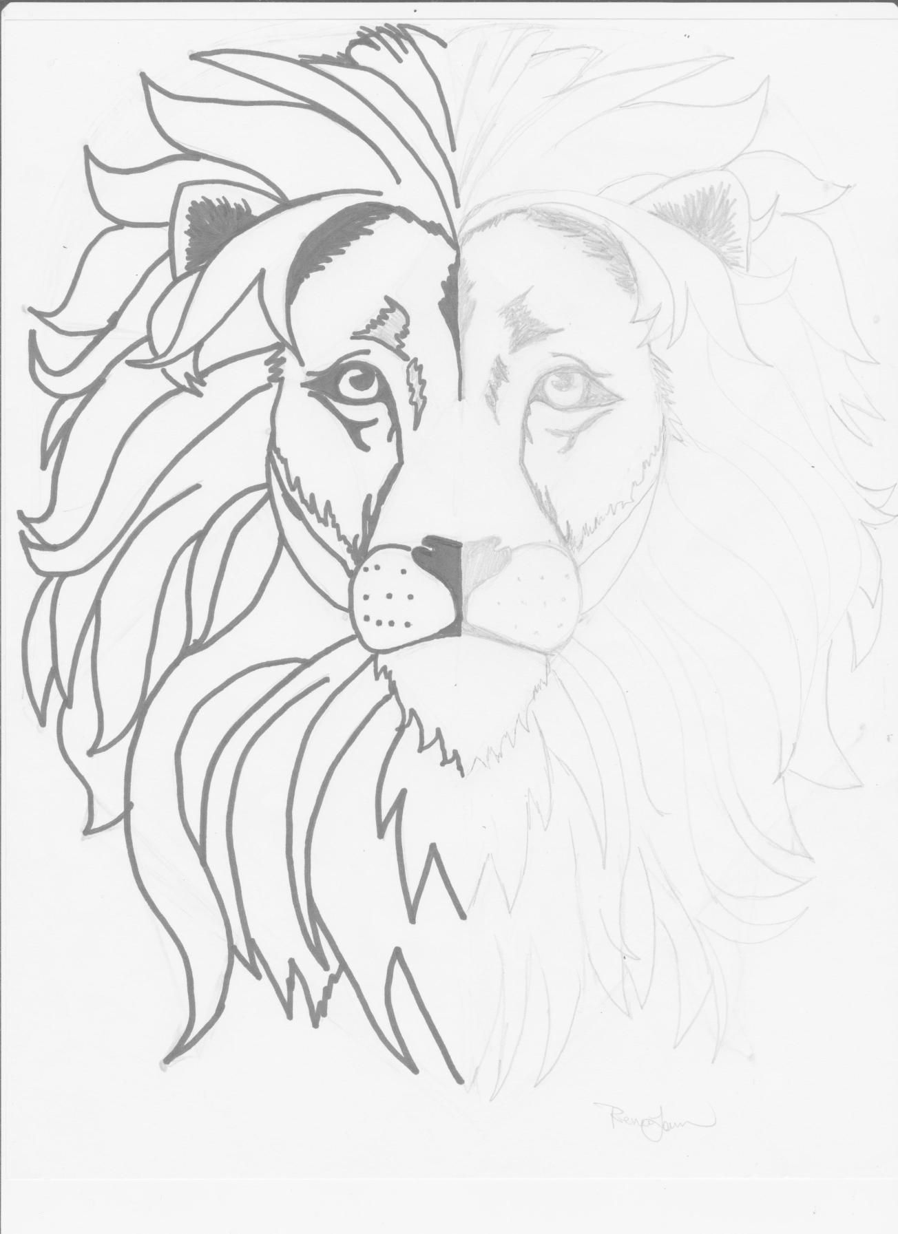 Mirror Image Lion Drawing Week Two Classical