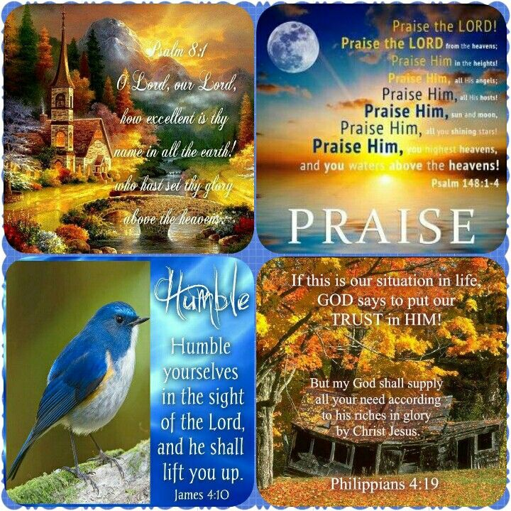 Hug Me Jesus ❤JESUS LOVES US❤ Shirley'sLove PRAYER AMEN PSALM 8:1 1. O LORD, our Lord, how majestic is your name in all the earth. You have set your Glory above the Heavens.  PSALM 148:1-4 1.Praise the Lord! Angels above,     praise the Lord from heaven! 2. Praise him, all you angels!     Praise him, all his army! 3. Sun and moon, praise him!     Stars and lights in the sky, praise him! 4. Praise him, highest heaven!     Waters above the sky, pr