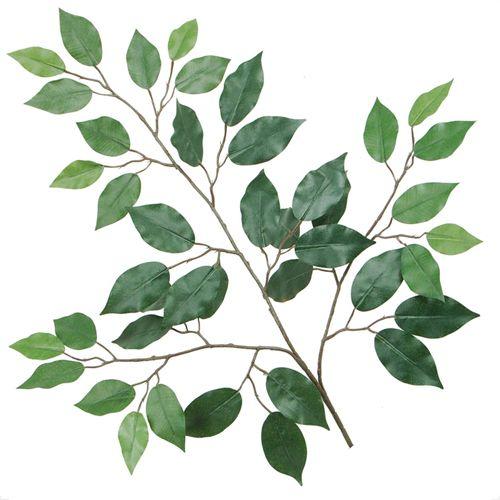 Silk Ficus Benjamina Tree Branches 22 Quot X42 Leaves Green