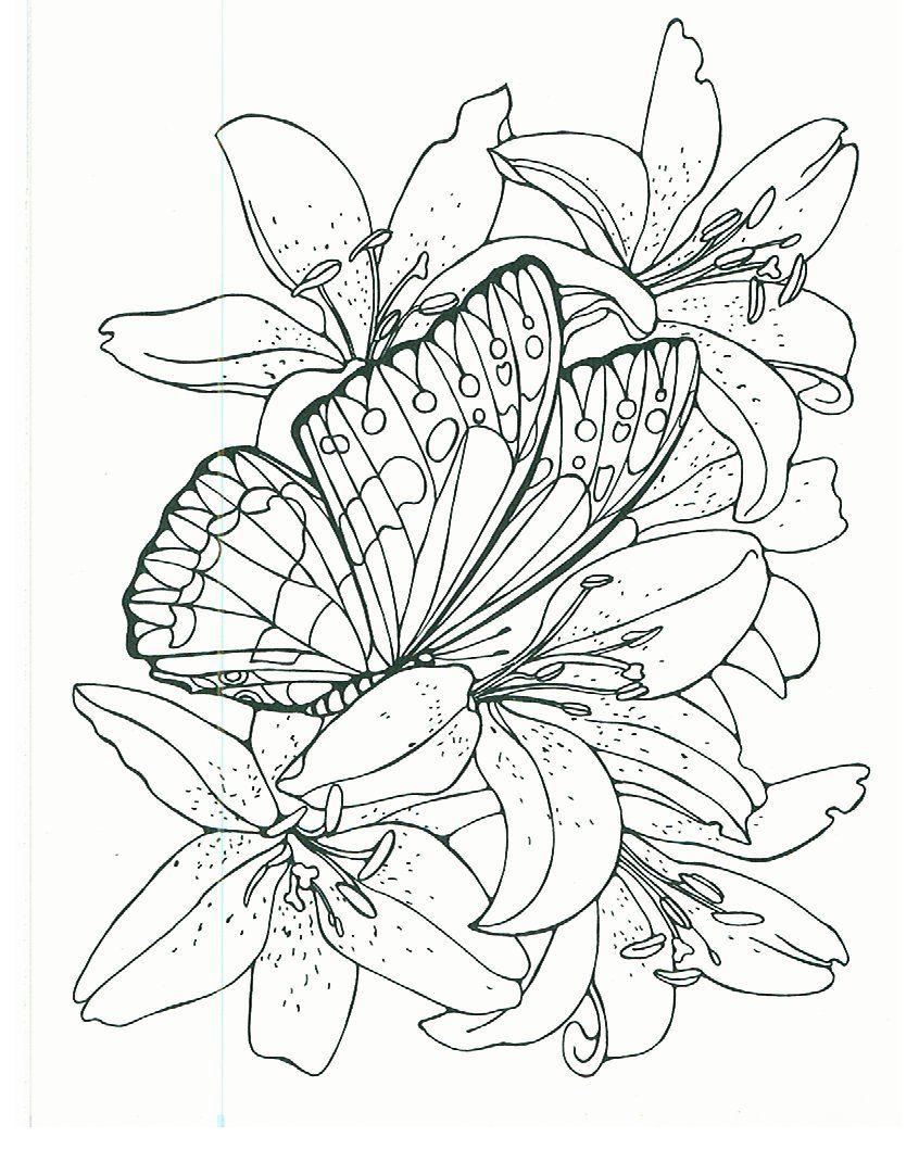 vlinders bussel roos op kleurplaatjes vlinders coloring