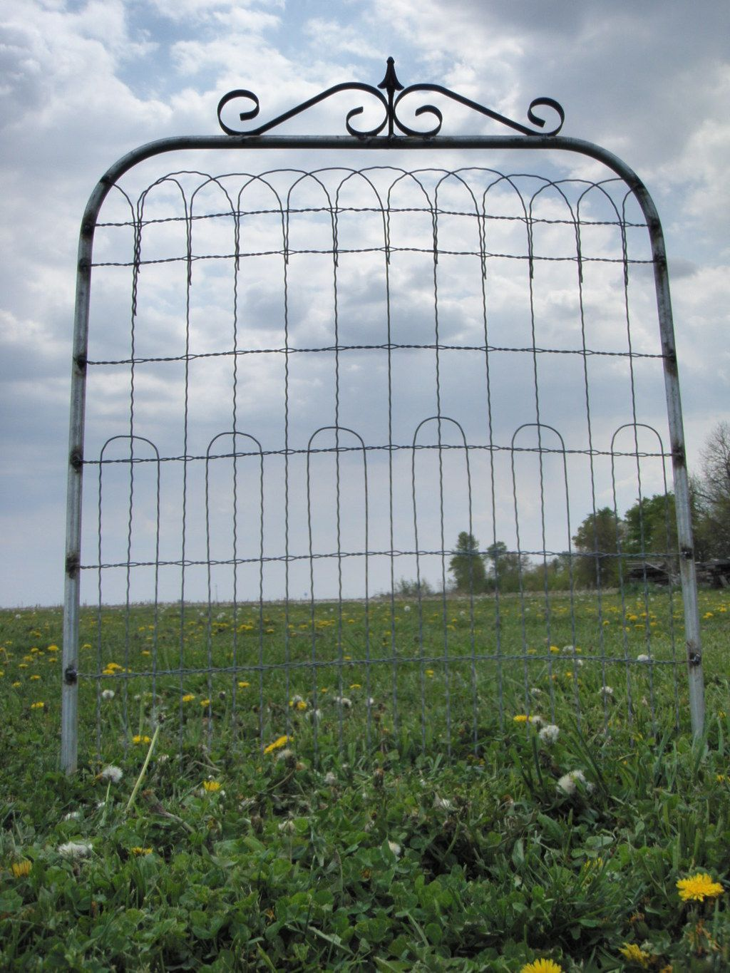 36 Tall X 36 Wide Wire Fence Garden Gate This Ornamental Wire Gate Is Made  With 36 Tall Fence. The Width Is 36 From Side To Side. Height Is