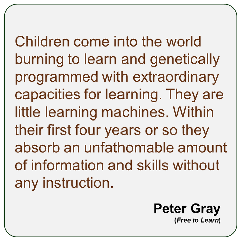 """Children come into the world burning to learn and genetically programmed with extraordinary capacities for learning. They are little learning machines. Within their first four years or so they absorb an unfathomable amount of information and skills without any instruction."" Peter Gray"
