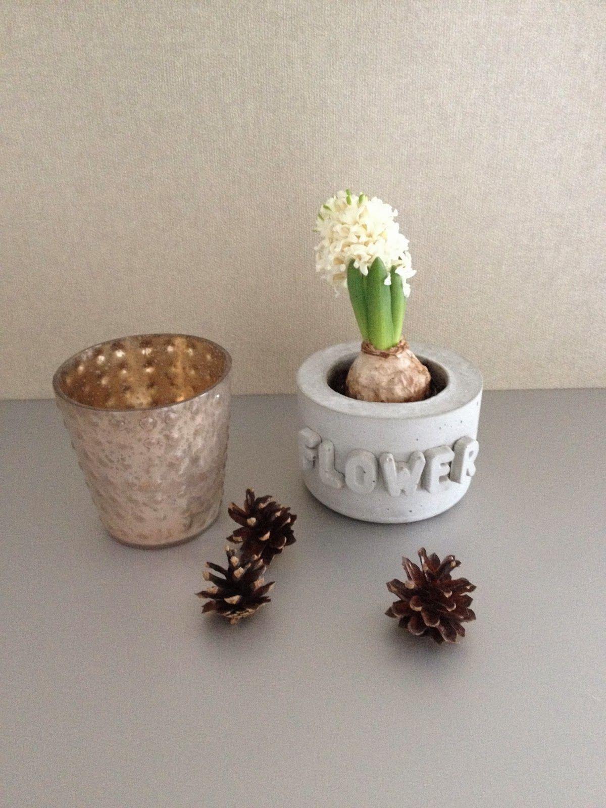 wohnbrise: beton topf, flower | beton love | pinterest
