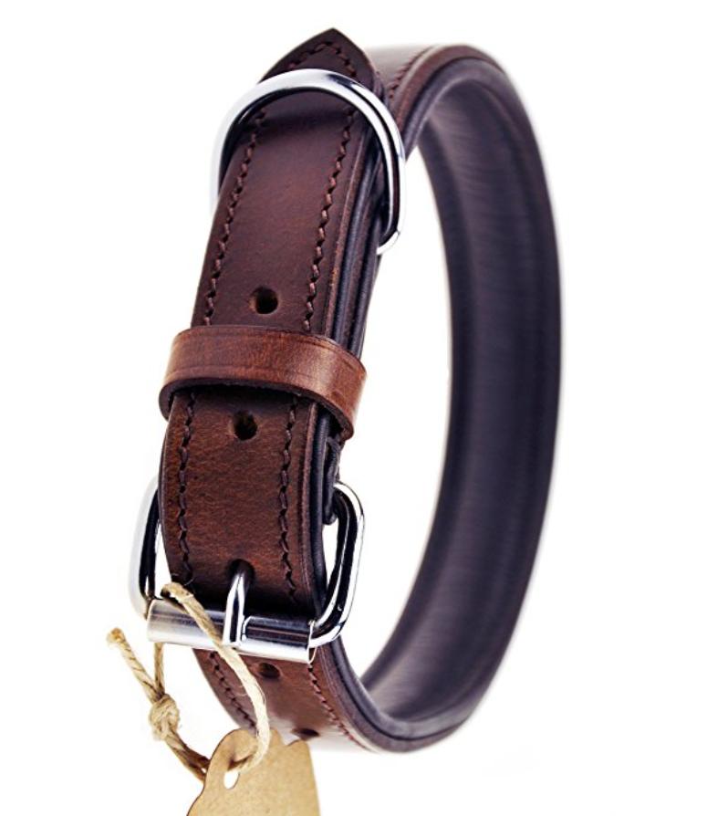 Coole Halsbander Finden Sie Unter Http Hunde Abc Net Shop Halsband Leine Hunde Halsband Hundehalsband Leder Hundehalsband