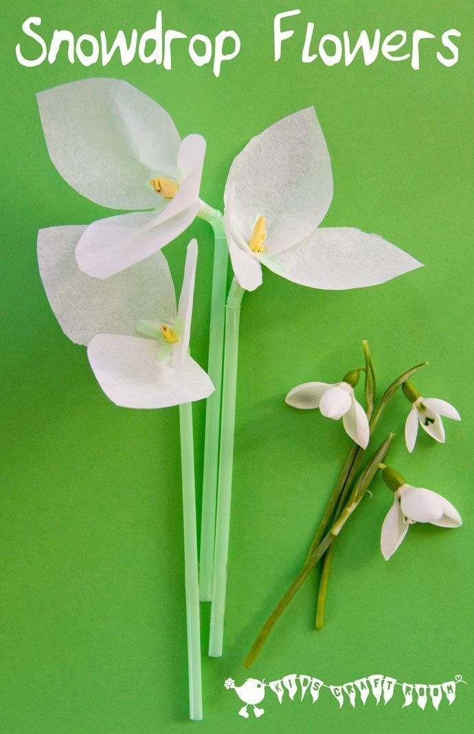 Snowdrop Tissue Paper Flowers A Simple Winter Craft For Kids
