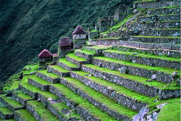 Teras di Lereng Machu Picchu