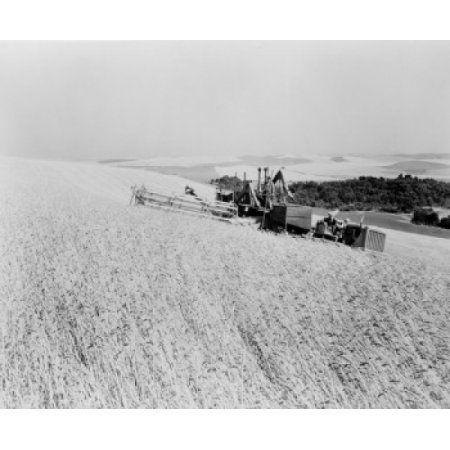 USA Washington State Wall Walla Combine harvesting wheat Canvas Art