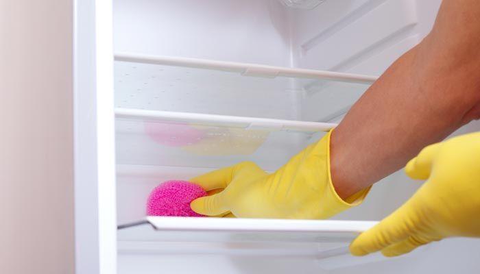 Kühlschrank Desinfektion : Kühlschrank reinigen fridge refrigerator cleaning easy trick