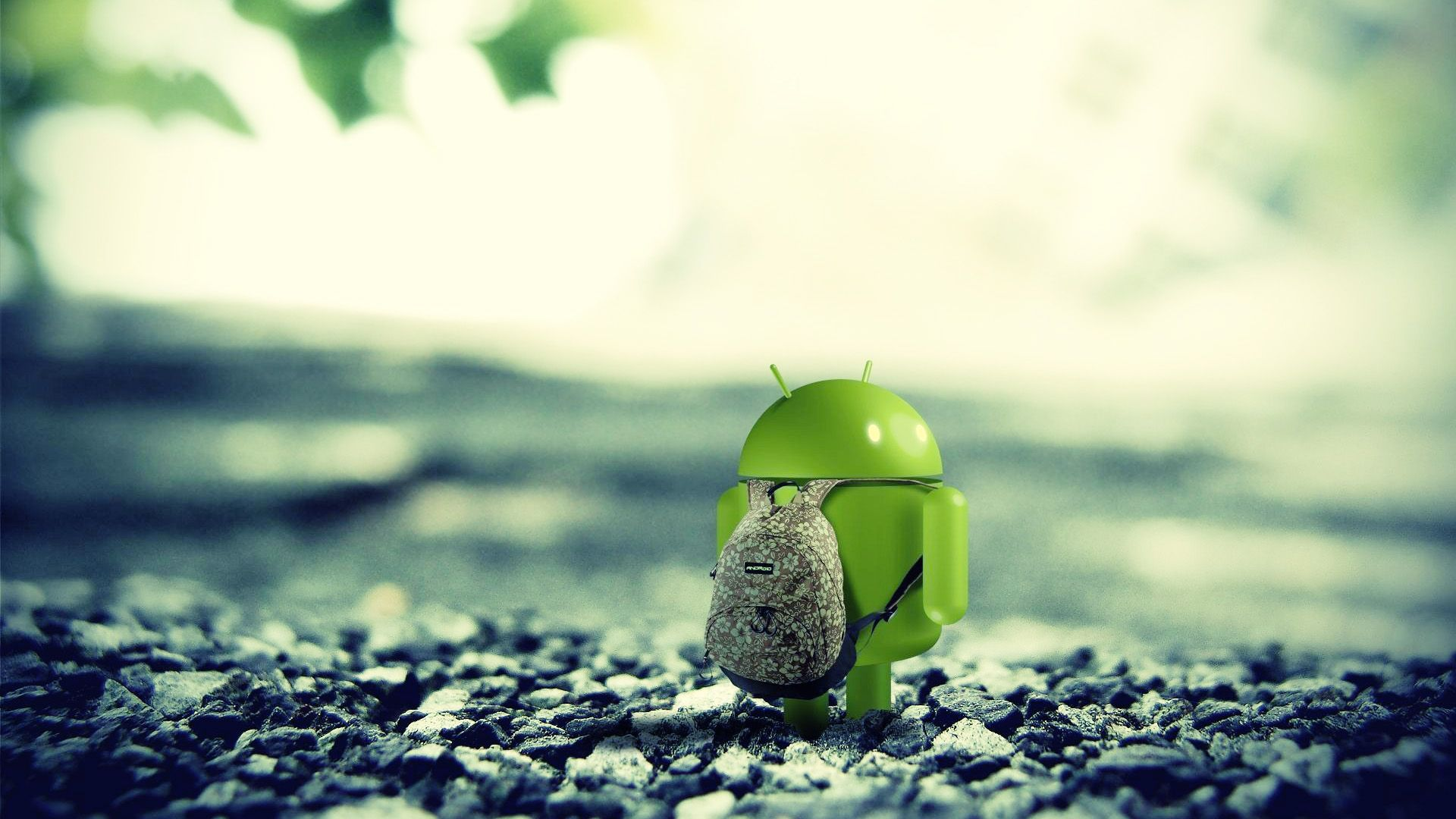we compiled a collection of 20 best android wallpapers 2013 that you can set as desktop background to give your desktops a great new look