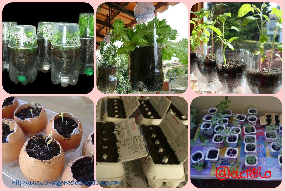 Huerto escolar botellas plastico y otros materiales reciclados ...
