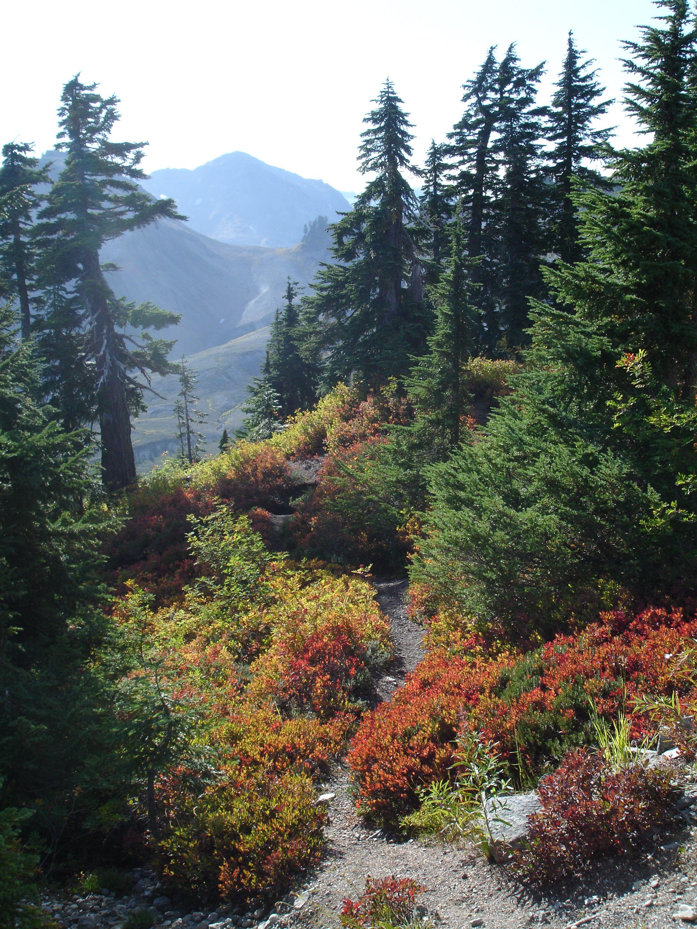 Artist Point, Mt.Baker Wilderness, Washington state