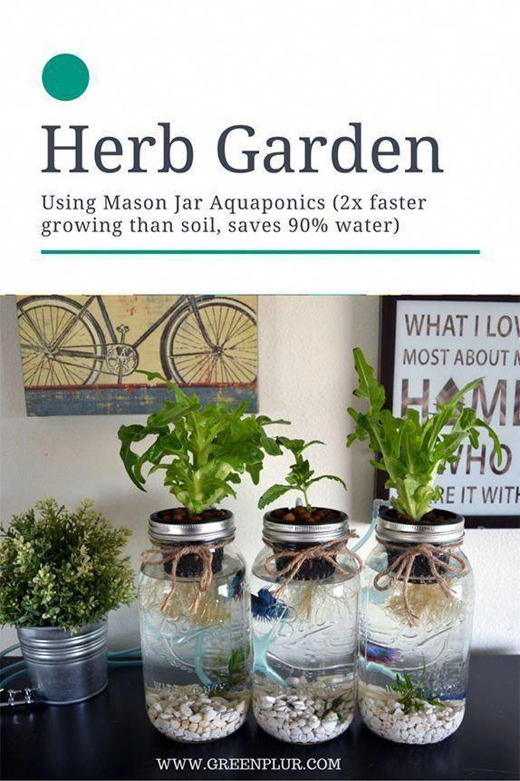 3 mason jar aquaponics kit organic sustainable fish on indoor herb garden diy wall mason jars id=49599