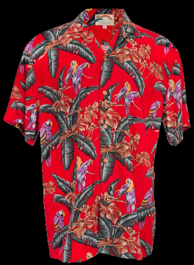 6c31070a8 Pi Shirt, Aloha Shirt, Hawaiian Costume, Hawaii Outfits, Mens Hawaiian  Shirts,