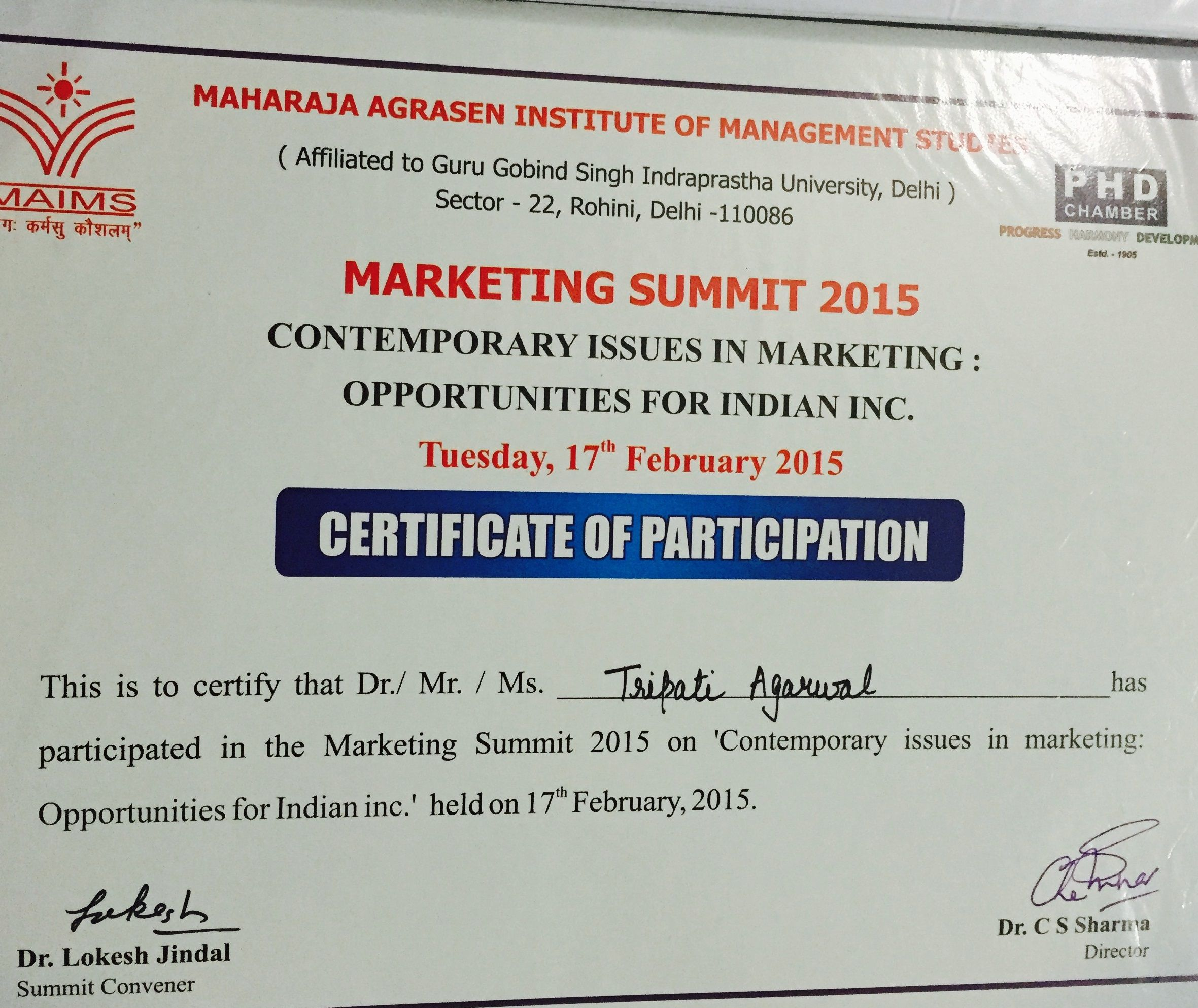 Participation Certificate In Marketing Summit 2015 Tripti Aggarwal