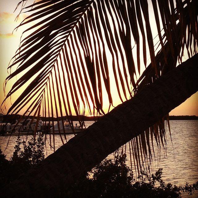 Florida Keys Sunset - Islamorada, FL