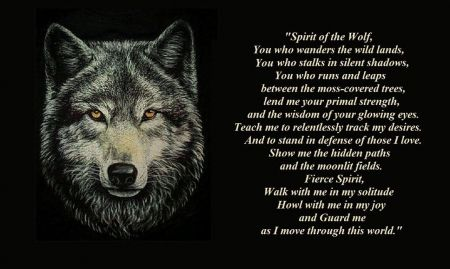 Only Words Friendship Mythical Abstract Pack Howl Howling