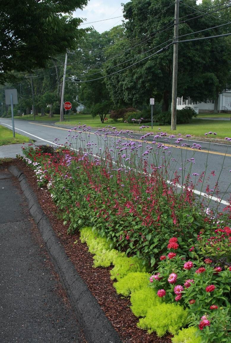 Charming Garden Ideas · Hell Strip ...