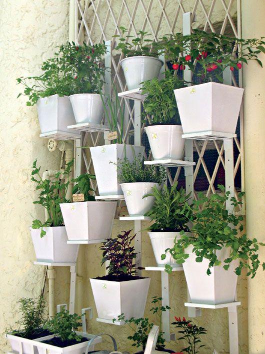 Horta com vasos brancos vertical garden apartment for Idea untuk garden
