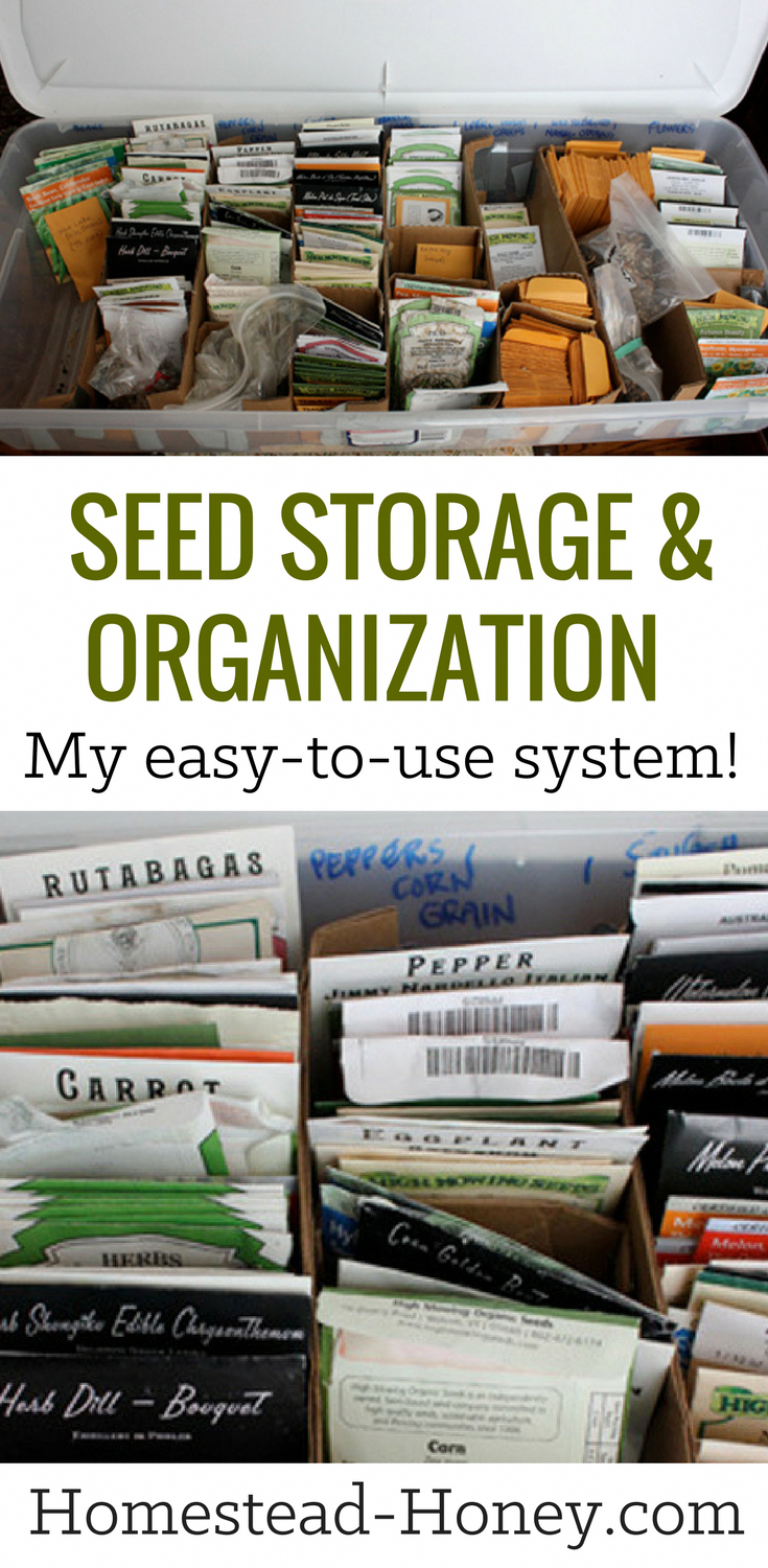 Keep your gardening seeds organized and and stored neatly and safely with this simple seed storage and organization system. your gardening seeds organized and and stored neatly and safely with this simple seed storage and organization system. | Homestead Honey