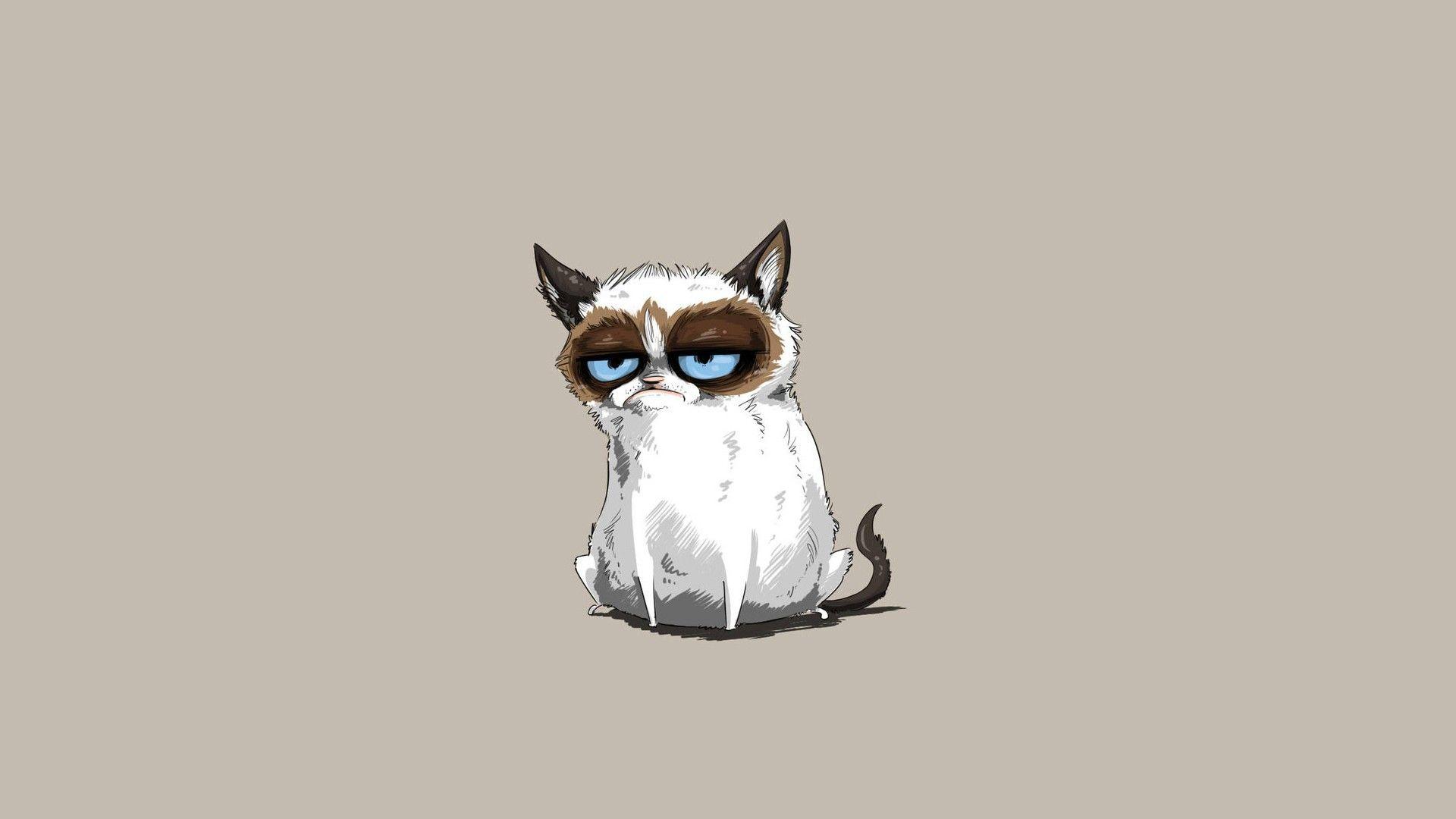 Cartoon Cat Wallpaper Free Vector Download Free Vector 19201200