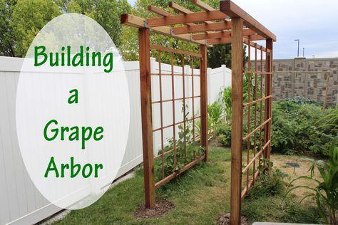 Building A Grape Arbor In Your Backyard Garden Our Stoney Acres