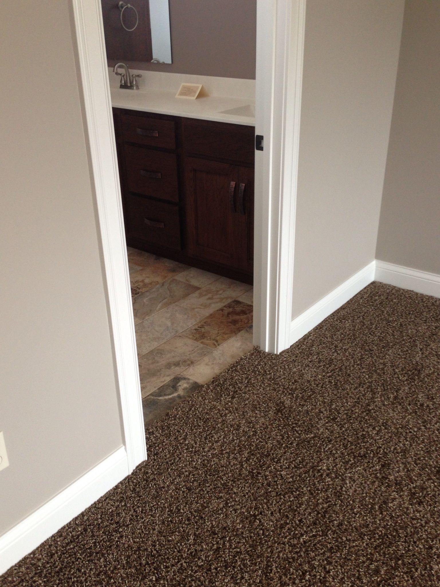 Like carpet looks much darker in this pic and tile colors with the light brown paint with dark brown carpet dailygadgetfo Image collections