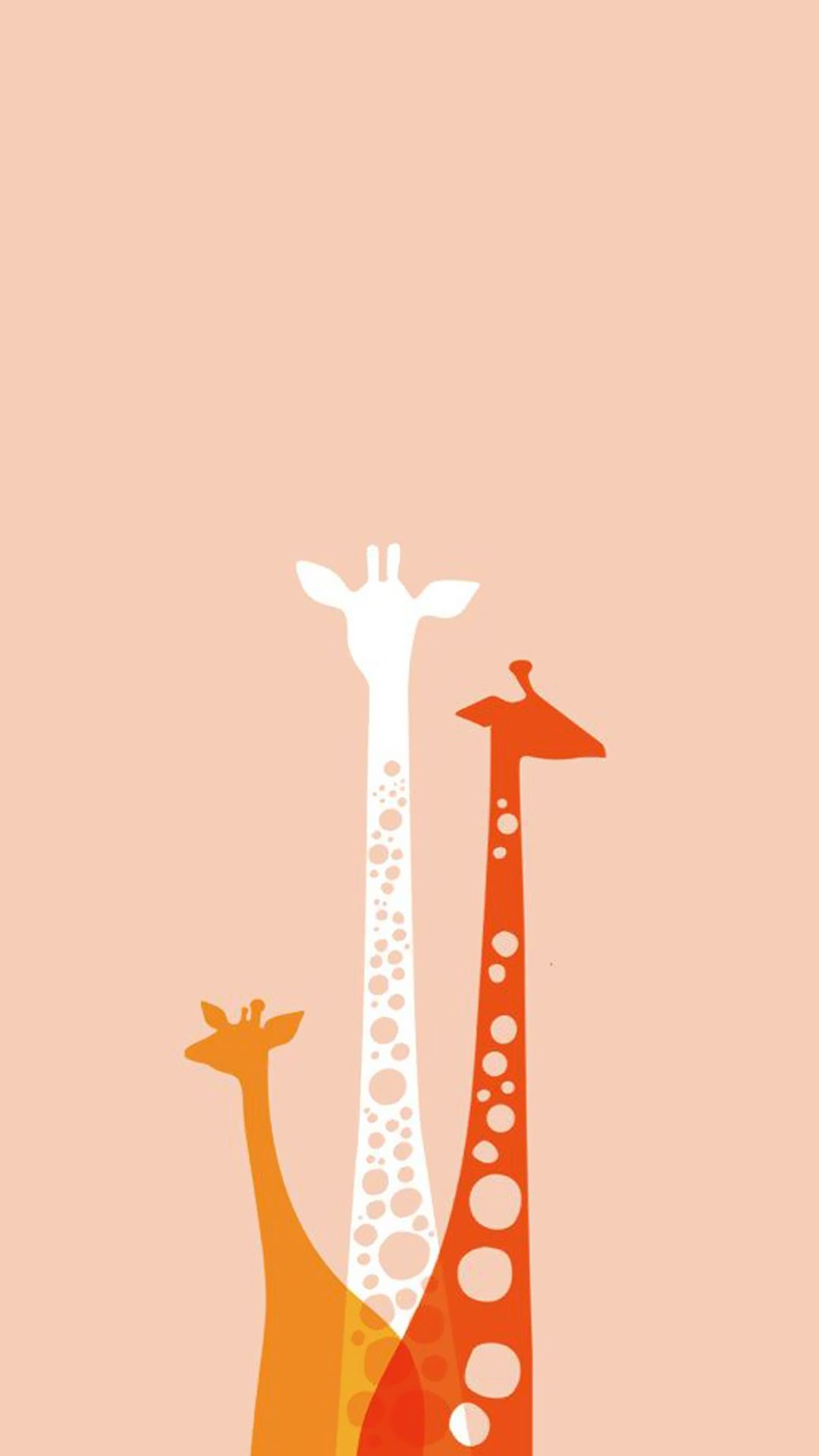 Yellow White Red Giraffe Are All Together Enjoy This Cute