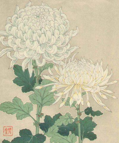 Chrysanthemums By Shodo Kawarazaki Japan Japanese Art Illustration Art Japanese Painting