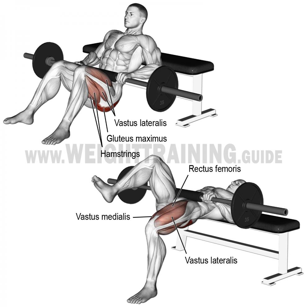 Comment effectuer l'exercice Hip Thrust unilatéral sur ...