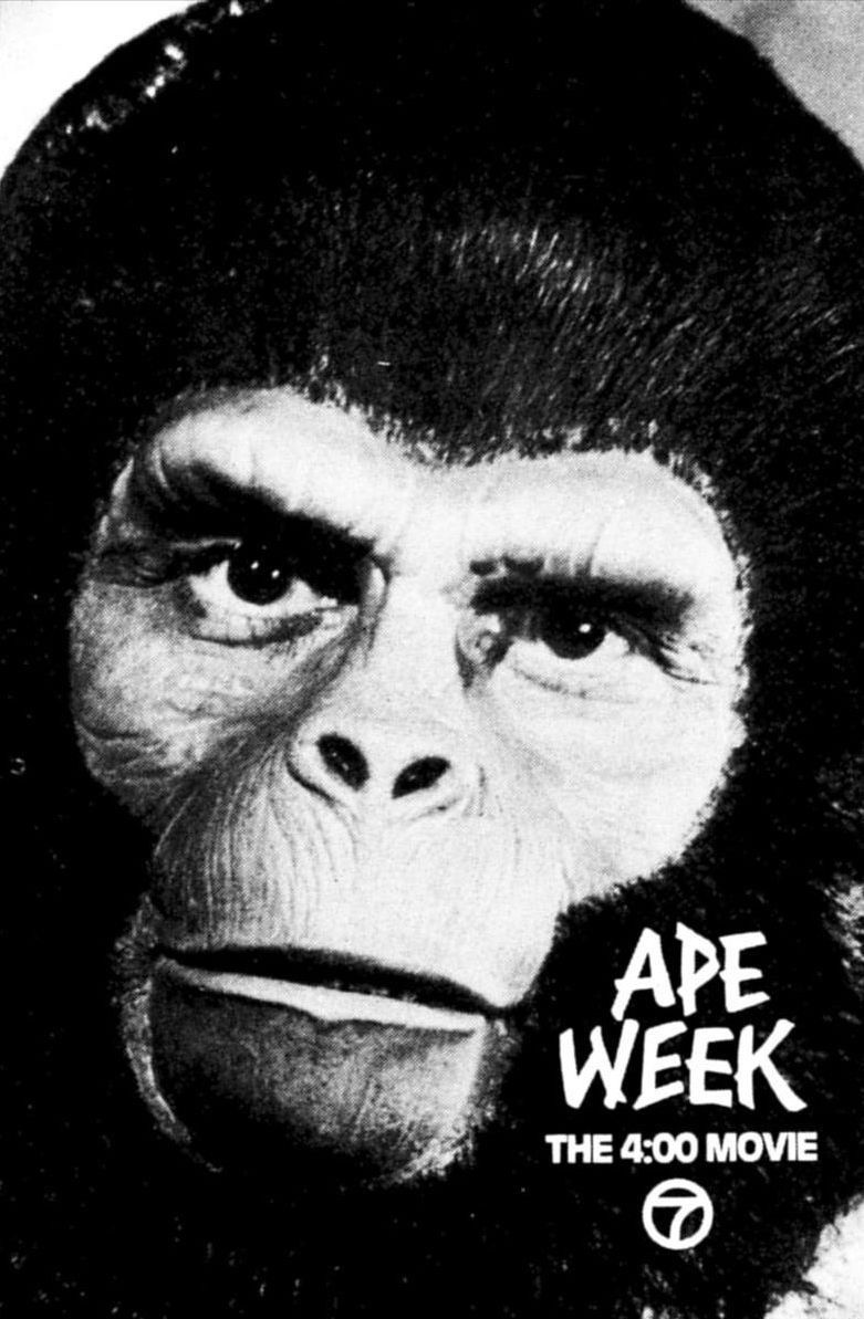 Planet of the Apes: Cornelius