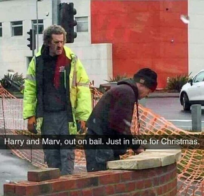 Harry and Marv, out on bail. Just in time for Christmas. | Funny ...