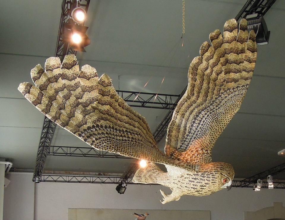 Voici quelques sculptures de rapaces nocturnes que j'ai fabriquées au fil du temps.   Toutes ces sculptures d'oiseaux sont en papier mach...
