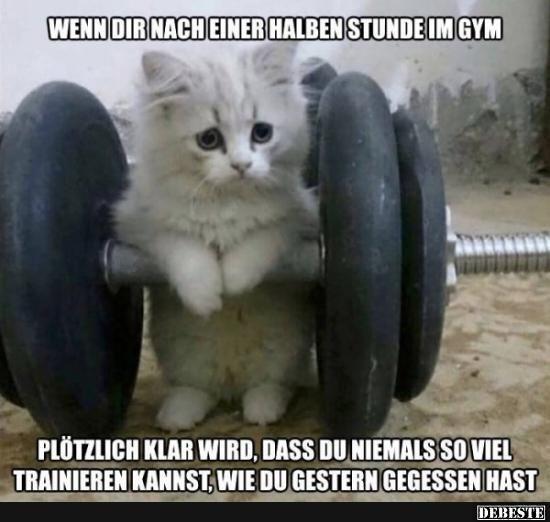 Photo of Wenn dir nach einer halben Stunde im Gym..