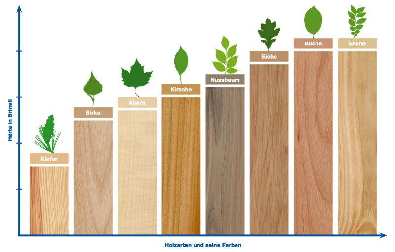 Holz Arten parkett holzarten jpg 800 510 wood woods