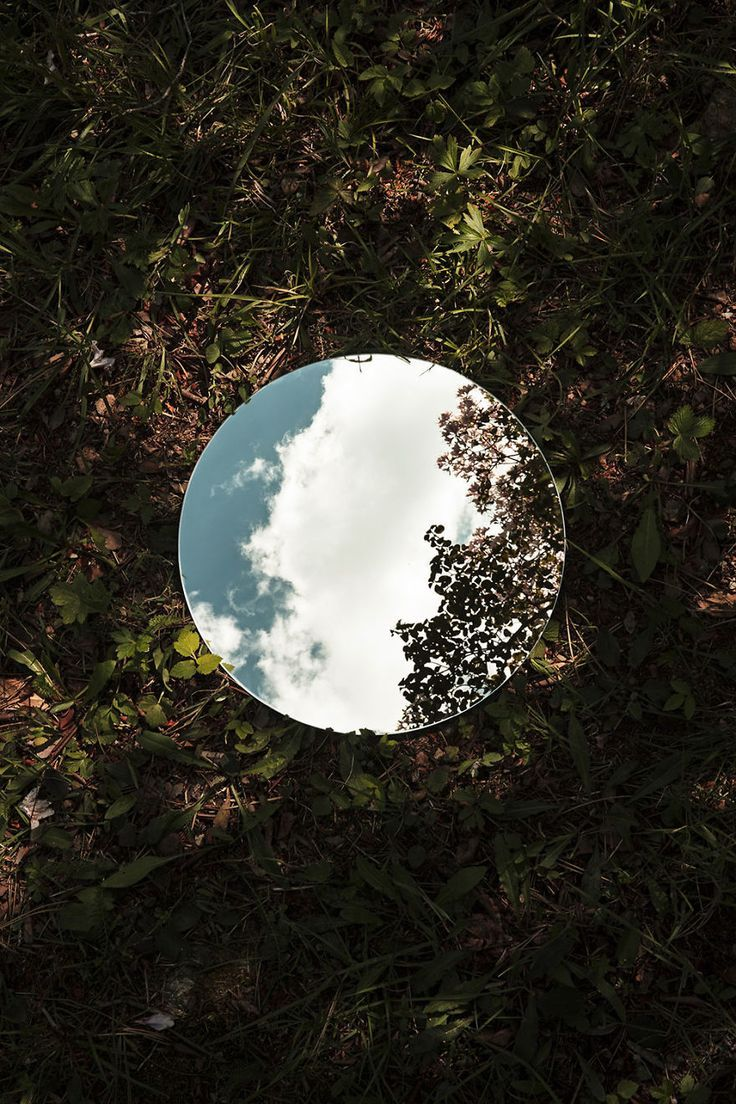 Wild nature | Reflections | Mirror in nature