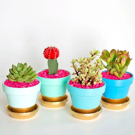 """Fun, colorful, and perfect for Spring.  You've got to come see how easy it is to make these """"gold dipped"""" succulent pots!"""