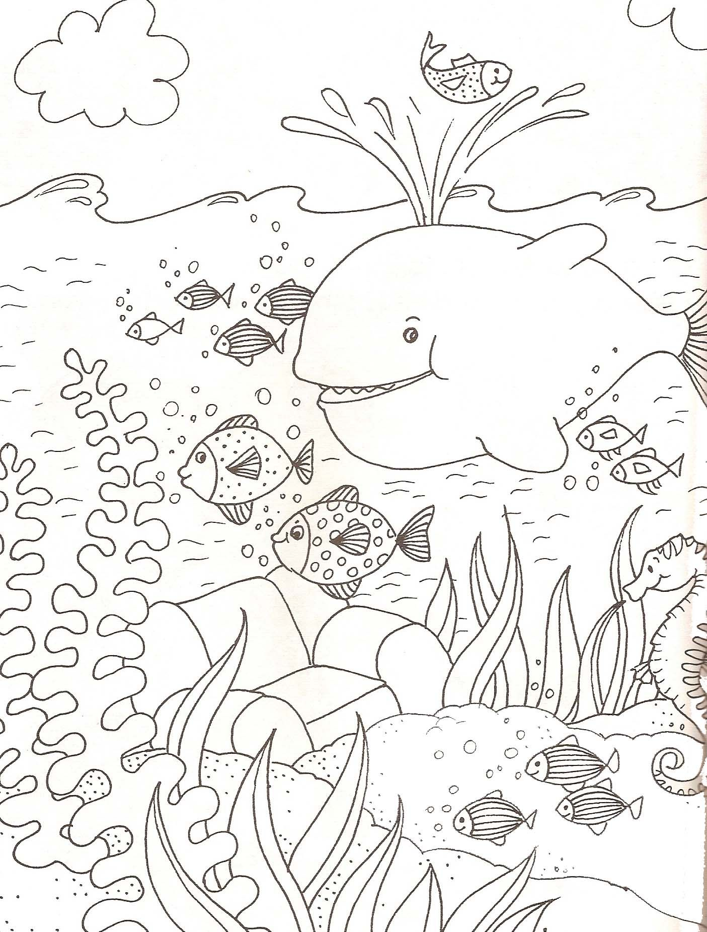 Petit poissons