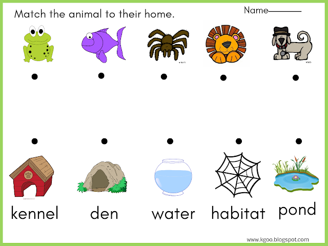 Matching Exercises Animals Crochet Projects Habitats