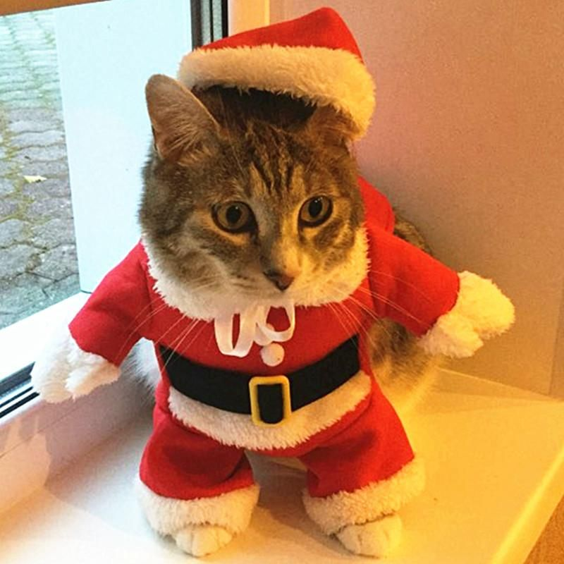 Type Cats Item Type Coats Jackets Pattern Christmas Tree Style Novelty Season Autumn Winter Material Cat Clothes Cat Christmas Outfit Santa Dog Costume